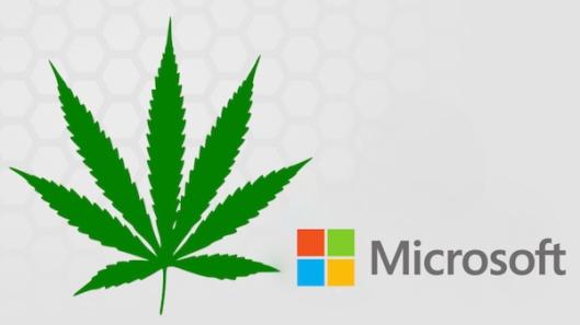 Microsoft-suruma-negocio