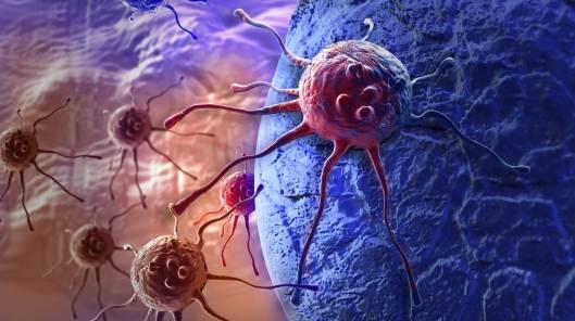 Celula_cancro_cancerosa